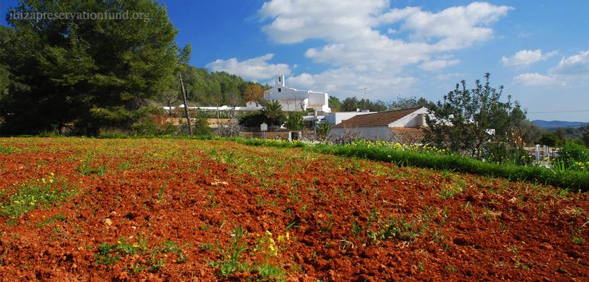 Banco de Tierras para promover la producción agrícola