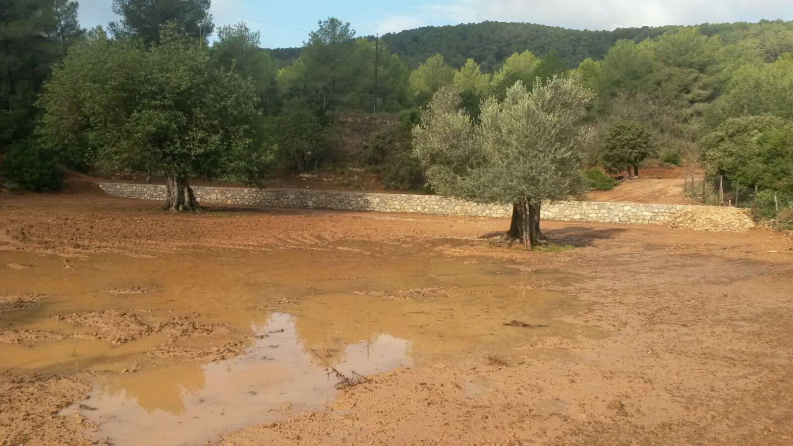 Balsas de agua y prevención de incendios en Serra Grossa