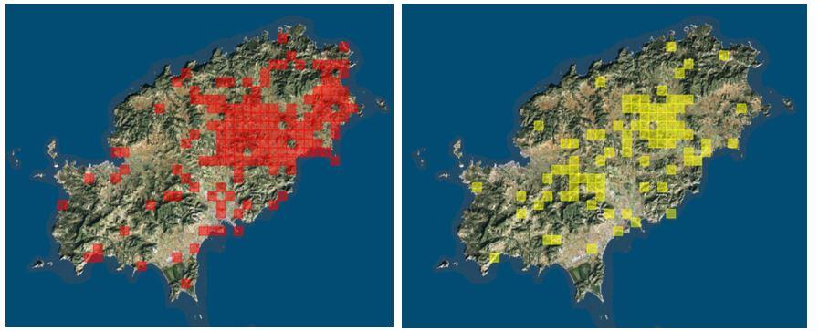 Figura 29. Distribución de las especies Hemorrhois hippocrepis (izquierda) y Rhinechis scalaris (derecha) en la isla deIbiza. Fuente: Bioatles del Govern de les Illes Balears.