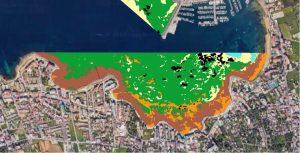 Figura 7. Cartografía bionómica de la bahía de Sant Antoni de Portmany, 2018. Las áreas perfiladas en negro son las áreas donde aparece Posidonia oceanica muerta. Elaboración propia (Fuente: Consell d′Eivissa, 2018).
