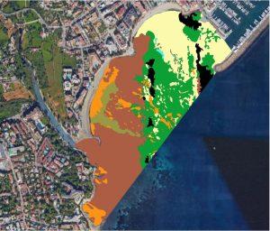 Figura 8. Cartografía bionómica de la bahía de Santa Eulària des Riu, 2018. Las áreas perfiladas en negro son las áreas donde aparece Posidonia oceanica muerta. Elaboración propia (Fuente: Consell d′Eivissa, 2018).