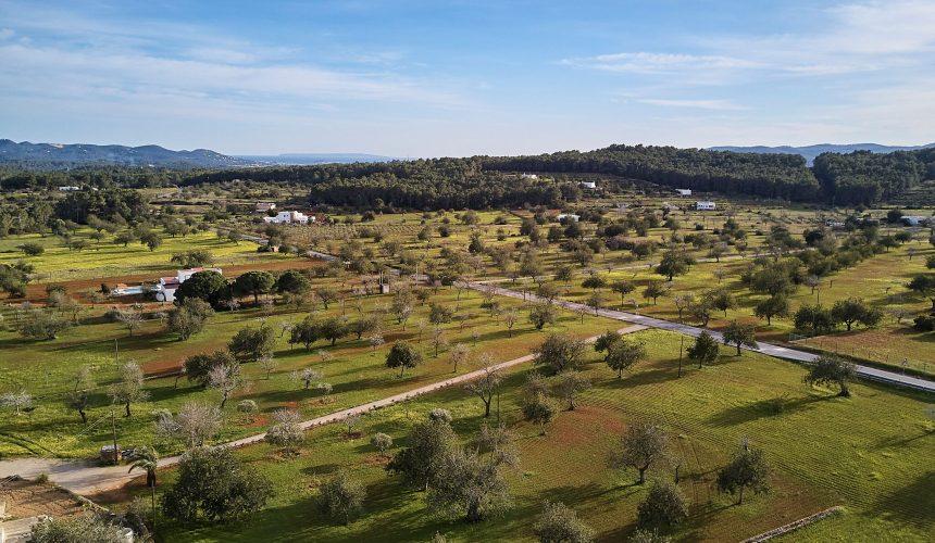 La agricultura ecológica de Ibiza se duplica en la última década pero el sector primario sigue siendo residual